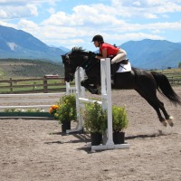 Tips for Managing School and Riding - Advice from a 4.0 Student and Varsity Equestrian